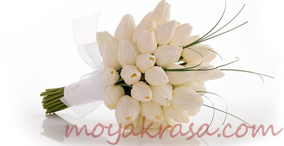 Какие цветы дарить девам по гороскопу