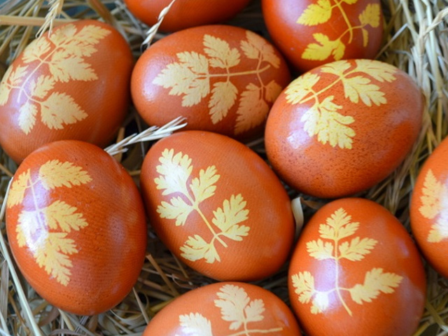 яйца с листками